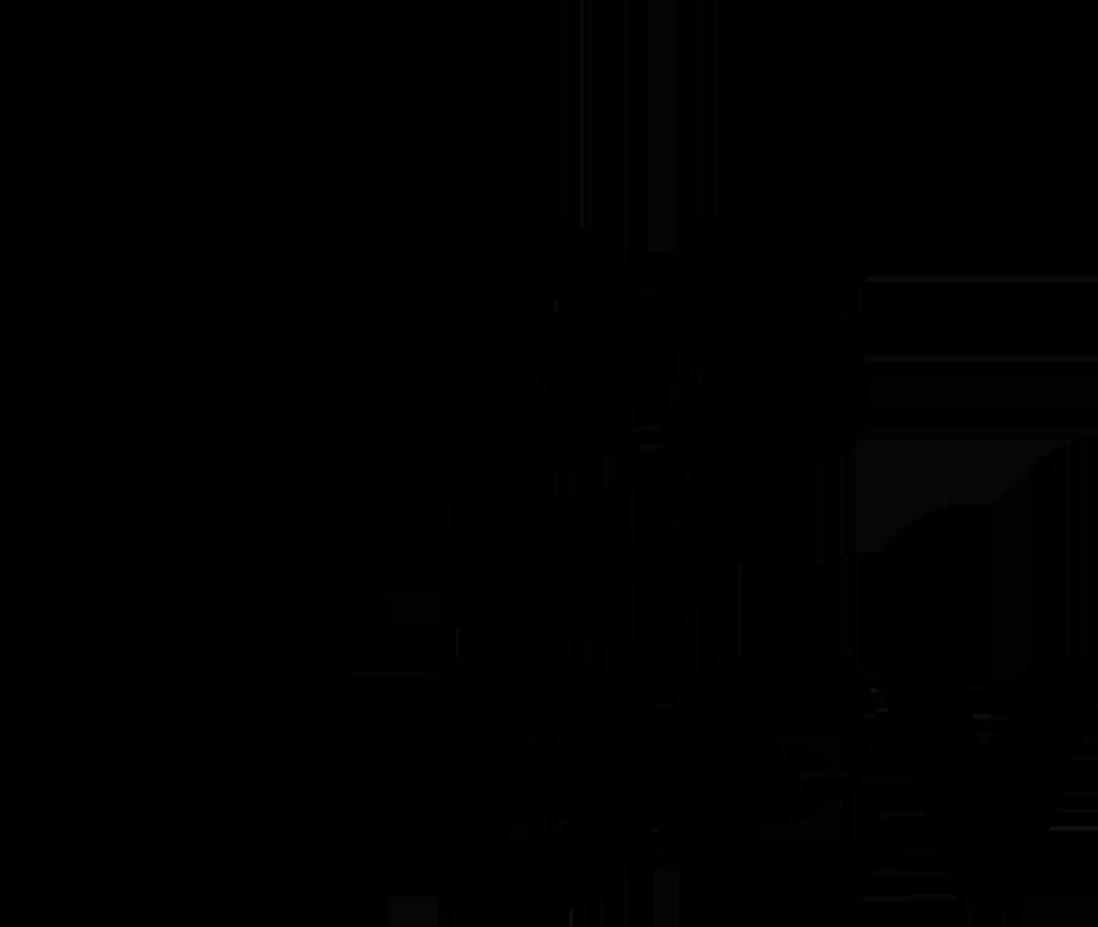 DS-dev